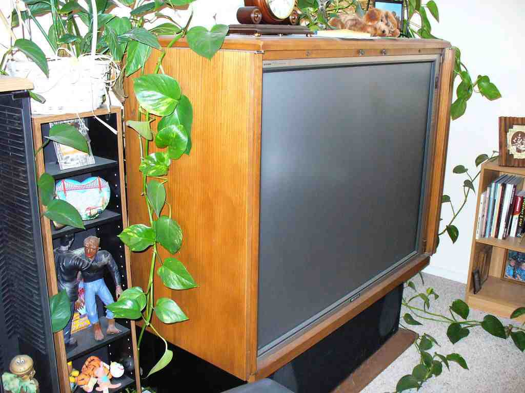 how big a tv for my living room 12 items you will find in an school afropolitan living 28119