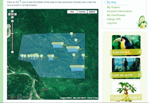 Cool Earth: chosen environmental charity. Personalised page showing how much rainforest has been saved from FieldView proceeds over the last 4-5 years.