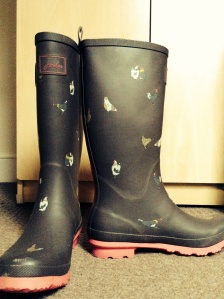 Festival essentials: love my wellies.